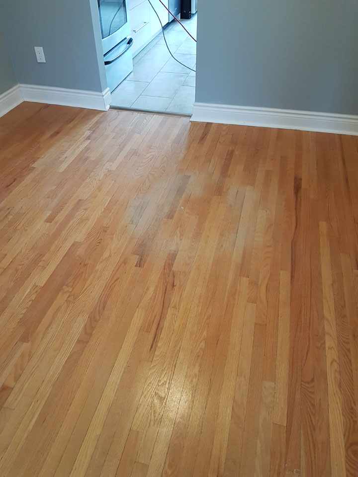 Hardwood/Laminate Floor Cleaning in London